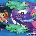 クジラッキー&クジラブリー
