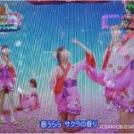 『ちゅらシー 桜バージョン』