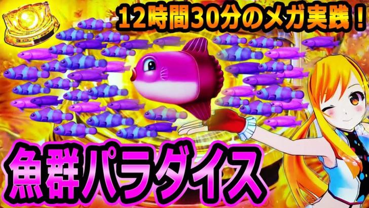 『CRAスーパー海物語IN沖縄4⑦』実践第7弾は魚群パラダイス!~12時間30分のメガ実践!